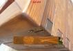 Esenta de lemn de Molid